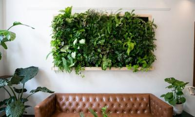 Step-by-Step Guide To Creating a Succulent Wall Garden