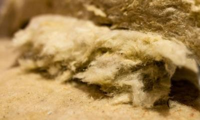 Rockwool for Plants | What Is It and What Is It Made Of?